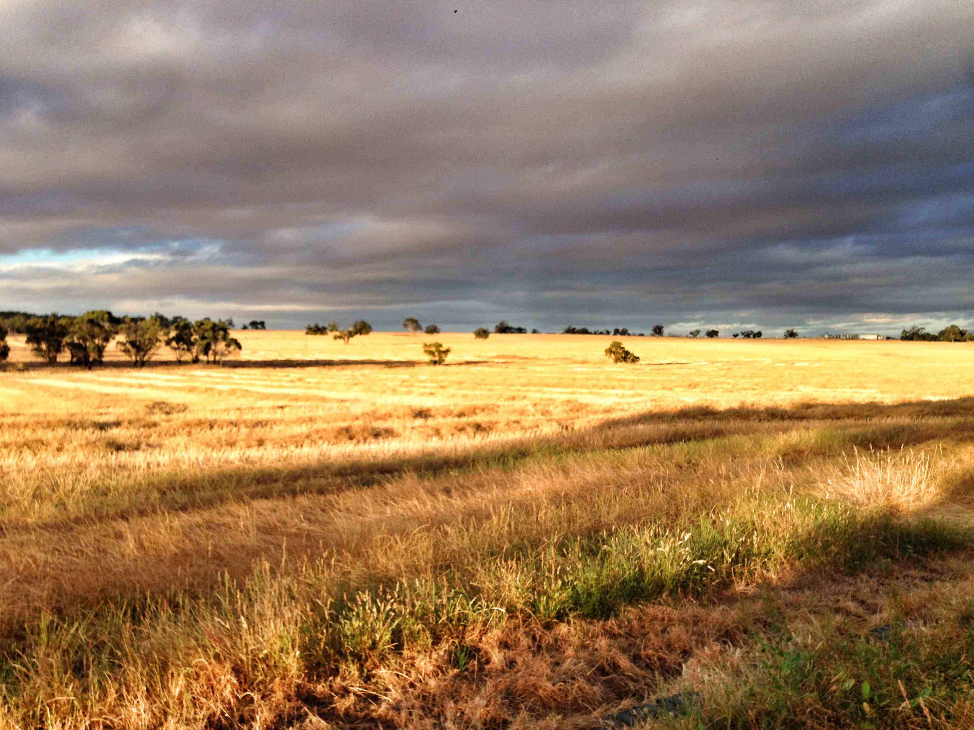 Colours of Katanning in November